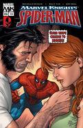 Marvel Knights Spider-Man Vol 1 13