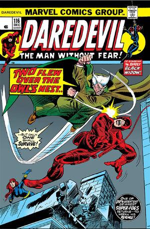 Daredevil Vol 1 116