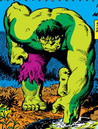 Bruce Banner (Earth-616) from Incredible Hulk Vol 1 141 0001