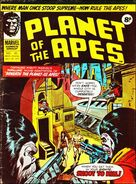Planet of the Apes (UK) Vol 1 40