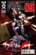 Untold Tales of Punisher MAX Vol 1 1
