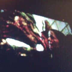 A blurry photo from the 2011 San Diego comic con depicting the Lizard.