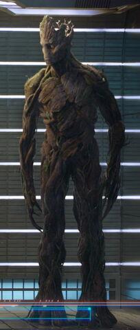 File:Groot GotG.jpg