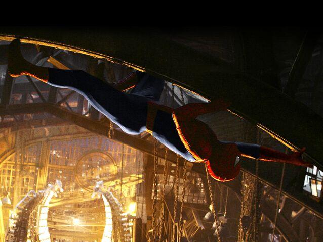 File:Spider-crawling.jpg