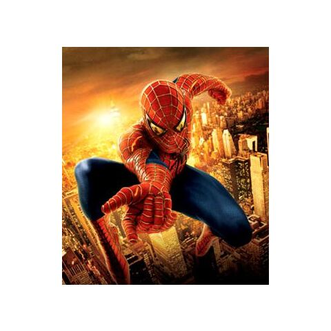 The Spider-Man suit seen in <i>Spider-Man 2</i>.