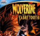 Marvel Knights: Wolverine Vs. Sabertooth