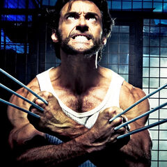 Wolverine adamantium claws protruding from  knuckles