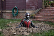 Ant-Man 06
