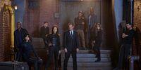 Coulson's Team