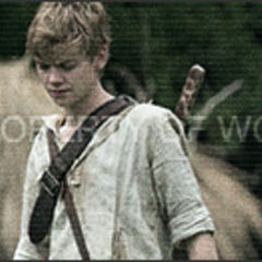 WCKD Newt