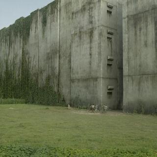 The Glade - The Maze Runner Wiki