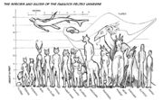 Alliance-species-size-chart-for-web1
