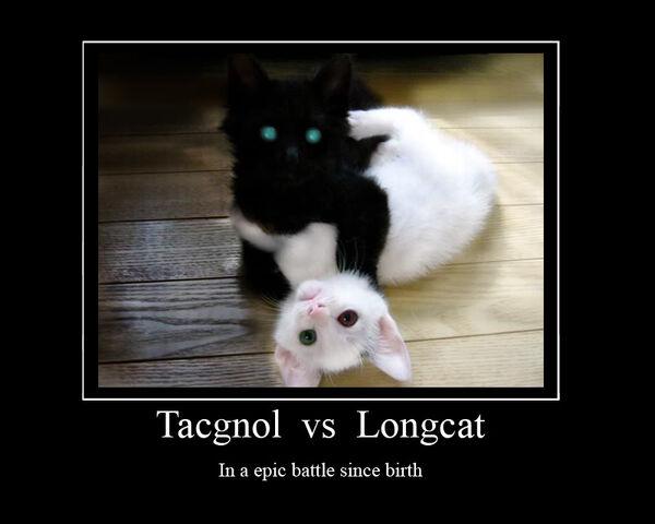 File:TacgnolVSLongcat0.jpg