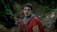 Sir Merlin
