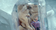 5. Morgana and his horse in the Main Square