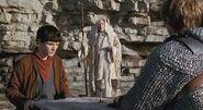 Anhora Merlin