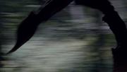 Vlcsnap-2012-03-10-11h45m46s4