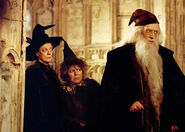 Miriam Margolyes-In Chamber Of Secrets