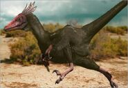 The Truth About Killer Dinosaurs Velociraptor