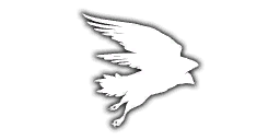 File:Emb CodeHawk iTPP.png