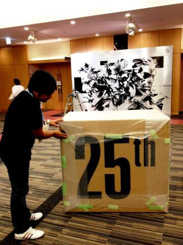 File:MGS-25-Box.jpg