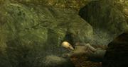 Sorrow skeleton