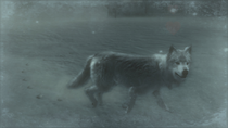 Another Wolf in the Snowfield (Metal Gear Solid 4)