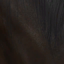 File:Dhorse hair4.png