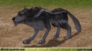 File:Wolf 1.jpg