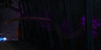 Темное Щупальце