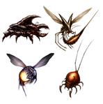 Talloniv bugs