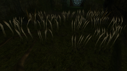 Deep Chozo Ruins Screenshot (1).png
