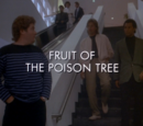 Fruit of the Poison Tree