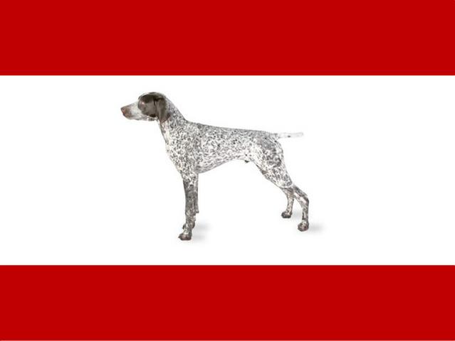 File:Flag of Er Rex.png