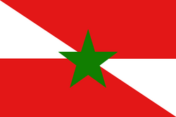 Flag of the Republic of Adana