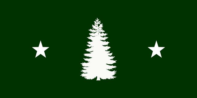 File:Flagofarborview.png