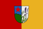 DV flag