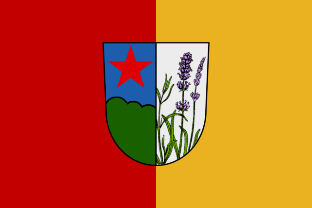 File:DV flag.png