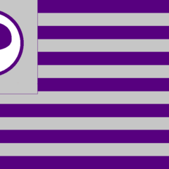 Flag of the Pirate Party