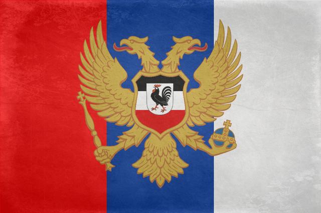 File:Dalton-Arika flag Grunge+CoA.png