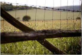 File:Border fence.jpg