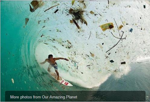 File:Trash Surfer.png