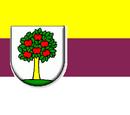 Slobodarsko-Jablonječka Republic