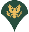 100px-US Army E-4 SPC svg.png