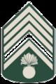 STAFF Sarge