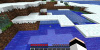 Snow/Gallery