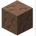 Brown mushroom block2