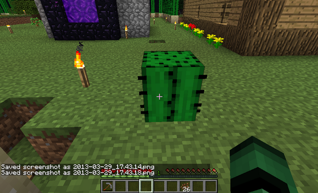 File:Cactus on Grass 4.png