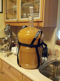 Mead Five gallons fermenting.jpg