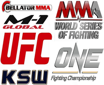 MMAPromotions
